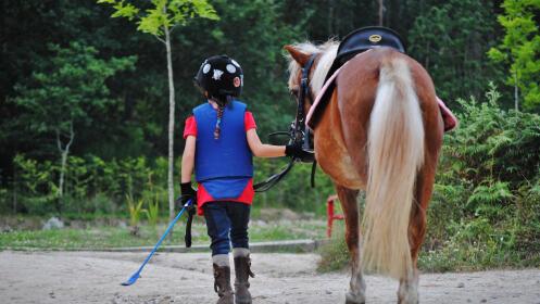 Bautismo ecuestre para niños y adultos. Acercarse al mundo del caballo.