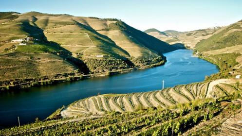 ¡Vive Oporto! Escapada en un 4 estrellas con spa, crucero y visitas. Incluye puentes y festivos. Portugal