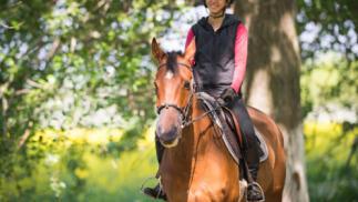 Fantástica ruta a caballo de 1 hora