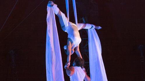 Entradas Circo Stellar en Pontevedra