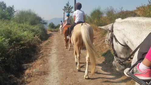 Fantástica ruta a caballo de 1 hora.