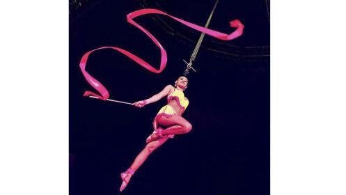 Entradas Circo Gottani Estrada ¡Oferta limitada!
