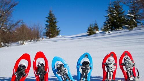 Hotel + Desayuno + Ruta Raquetas de Nieve para 2