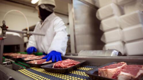 Curso Online manipulador de alimentos - descuento: 80% ...